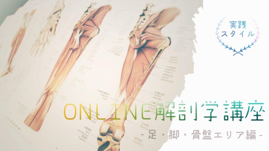 オンライン解剖学講座