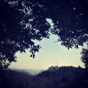日向山から見える江ノ島