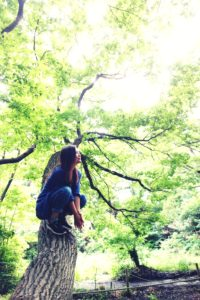 猿。上和田野鳥の森