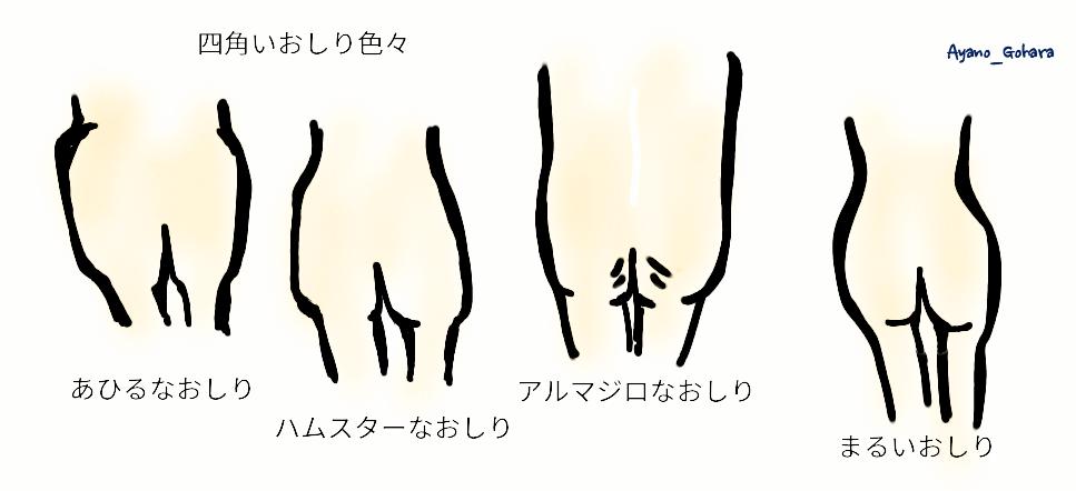 四角いお尻の種類